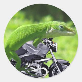 Jinete hawaiano verde del Gecko Pegatina Redonda
