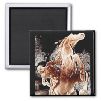 Jinete mítico del caballo imanes