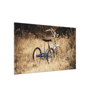 Jinete que espera del triciclo para lona envuelta para galerías