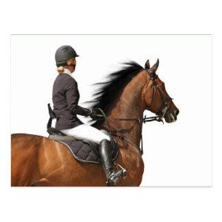 Jinete y caballo tarjetas postales