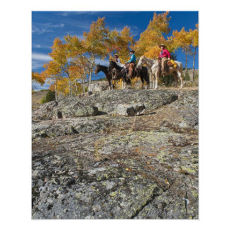 Jinetes de lomo de caballo 12 póster