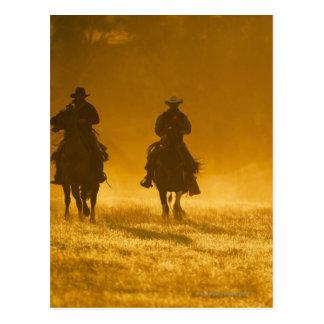 Jinetes de lomo de caballo 3 tarjeta postal