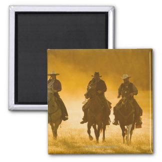 Jinetes de lomo de caballo 4 imanes