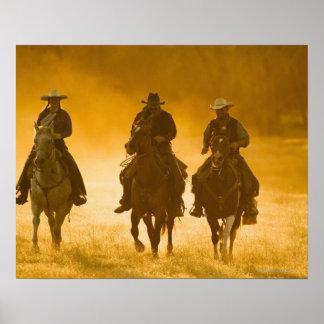 Jinetes de lomo de caballo 4 póster