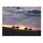 Jinetes de lomo de caballo en la puesta del sol 2 postales