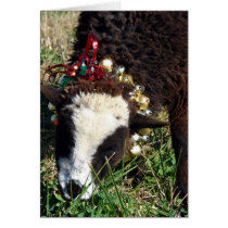Jingle Bell Lamb, Merry Christmas Card
