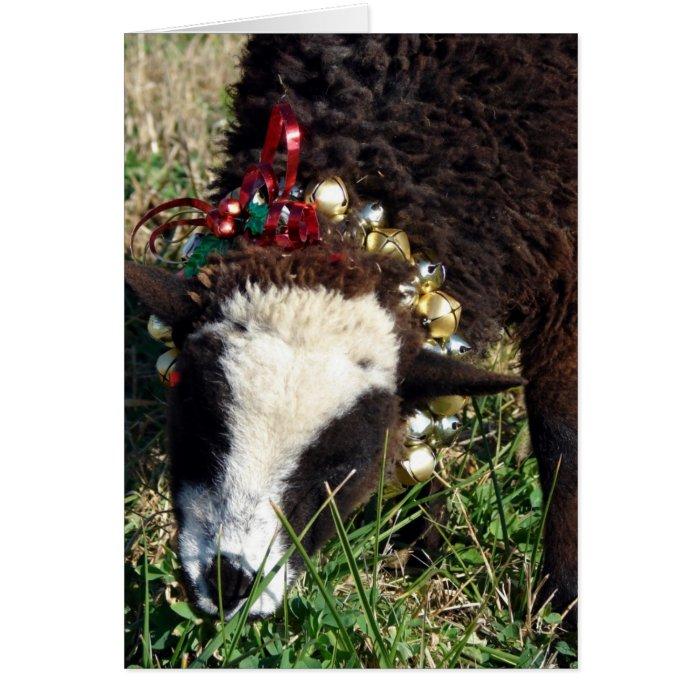 Jingle Bell Lamb, Merry Christmas Card