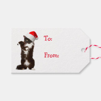 Jingle Bell Rock Cat Gift Tags
