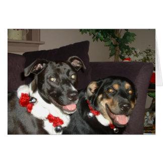 Jingle Dogs Greeting Card