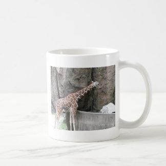Jirafa 1 taza de café