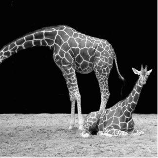 jirafa adorno fotoescultura
