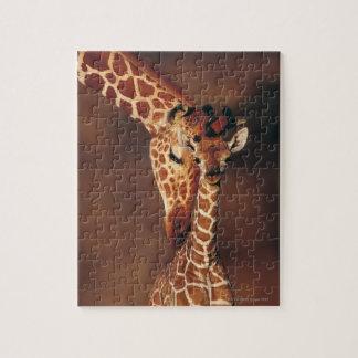Jirafa adulta con el becerro (camelopardalis del puzzle