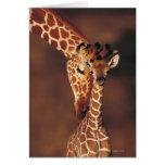 Jirafa adulta con el becerro (camelopardalis del tarjeta de felicitación