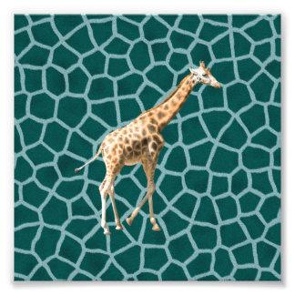 Jirafa africana en camuflaje azul fotografías