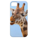 Jirafa africana gruñona iPhone 5 Case-Mate protector