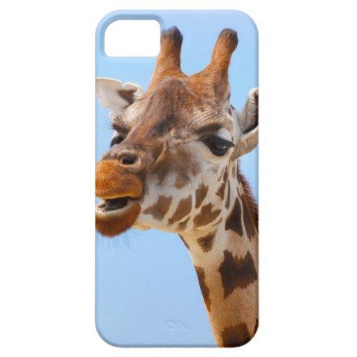 Jirafa africana gruñona iPhone 5 fundas