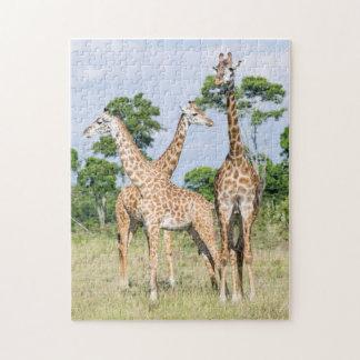 Jirafa de Maasai Puzzles