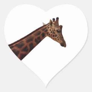 jirafa del baringo pegatina en forma de corazón