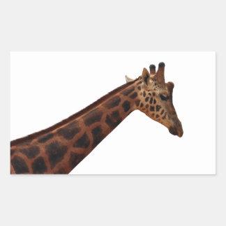 jirafa del baringo pegatina rectangular