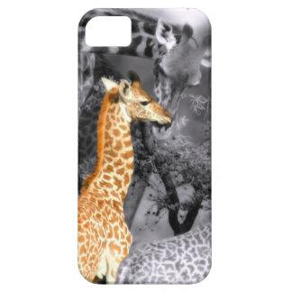 Jirafa del bebé iPhone 5 Case-Mate carcasa