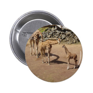 Jirafa del bebé y familia de la jirafa pin redondo 5 cm