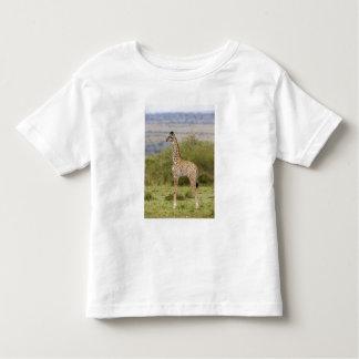 Jirafa del Masai (camelopardalis 2 del Giraffa Tshirt