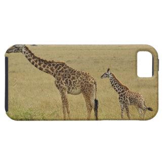 Jirafa del Masai de la madre y del bebé Giraffa 2 iPhone 5 Carcasa