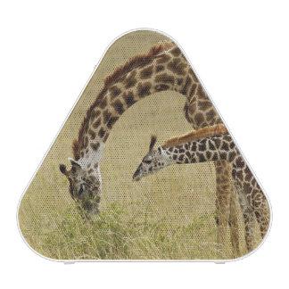 Jirafa del Masai de la madre y del bebé, Giraffa Altavoz Bluetooth