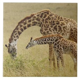 Jirafa del Masai de la madre y del bebé, Giraffa Azulejos Cerámicos