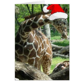Jirafa del navidad tarjeta de felicitación