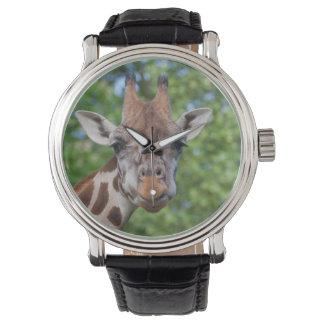 Jirafa dulce de los objetos curiosos relojes de pulsera