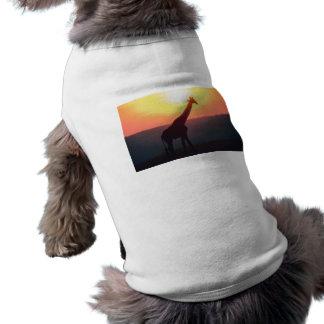Jirafa en la puesta del sol ropa perro