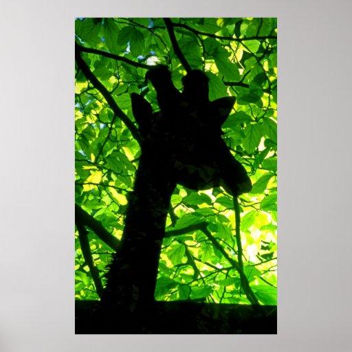 Jirafa en los árboles impresiones