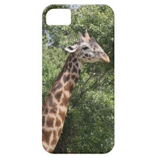 jirafa iPhone 5 Case-Mate carcasa
