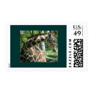 Jirafa hermosa agraciada sello