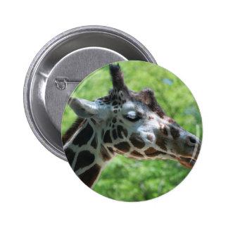 Jirafa hermosa pin