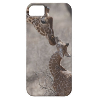 Jirafa, Kenia, África iPhone 5 Carcasas