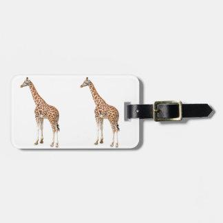 Jirafa larga del cuello etiquetas para equipaje