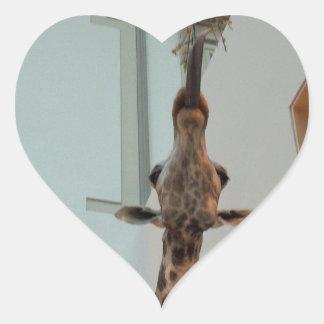 Jirafa, más afortunada que Marius; modelo 1 Pegatina En Forma De Corazón