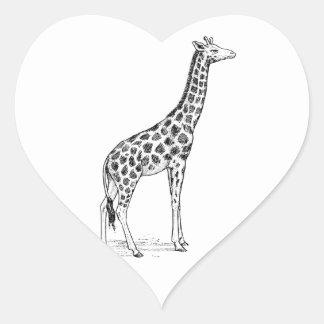 Jirafa Pegatina En Forma De Corazón