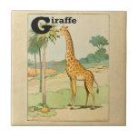 Jirafa que come el acacia en el desierto azulejo cuadrado pequeño