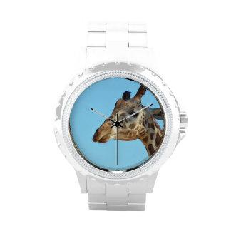 Jirafa realmente linda reloj