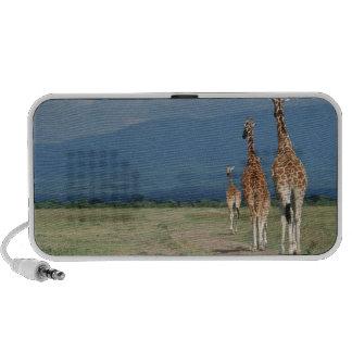 Jirafa reticulada (camelopardalis del Giraffa) 2 iPod Altavoces