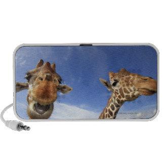 Jirafa reticulada (camelopardalis del Giraffa) Portátil Altavoces
