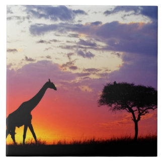 Jirafa silueteada en la salida del sol, Giraffa Azulejos