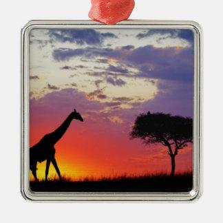 Jirafa silueteada en la salida del sol, Giraffa Ornamento Para Arbol De Navidad