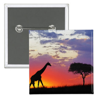 Jirafa silueteada en la salida del sol, Giraffa Pin Cuadrado