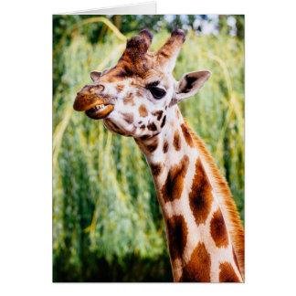 Jirafa sonriente, animal que muestra sus dientes tarjeta de felicitación
