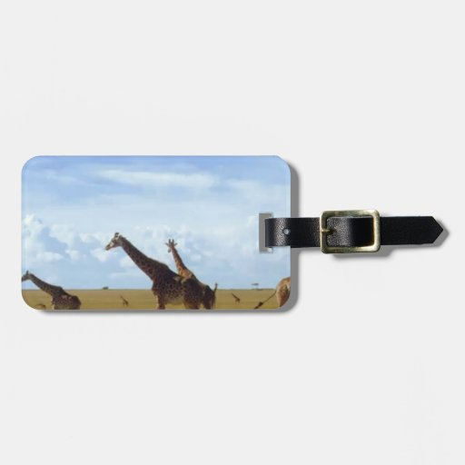 Jirafas africanas del safari etiquetas de equipaje