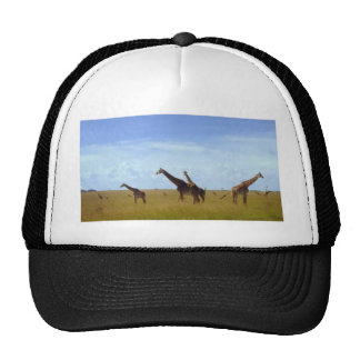 Jirafas africanas del safari gorro